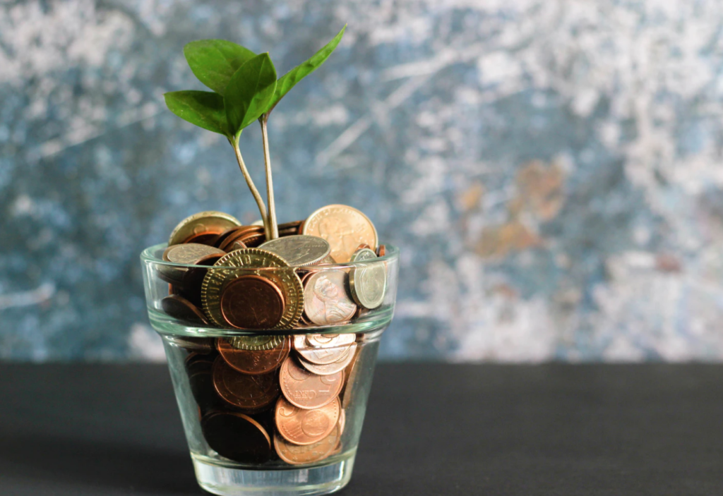 coins in cup with plant, money-saving guide