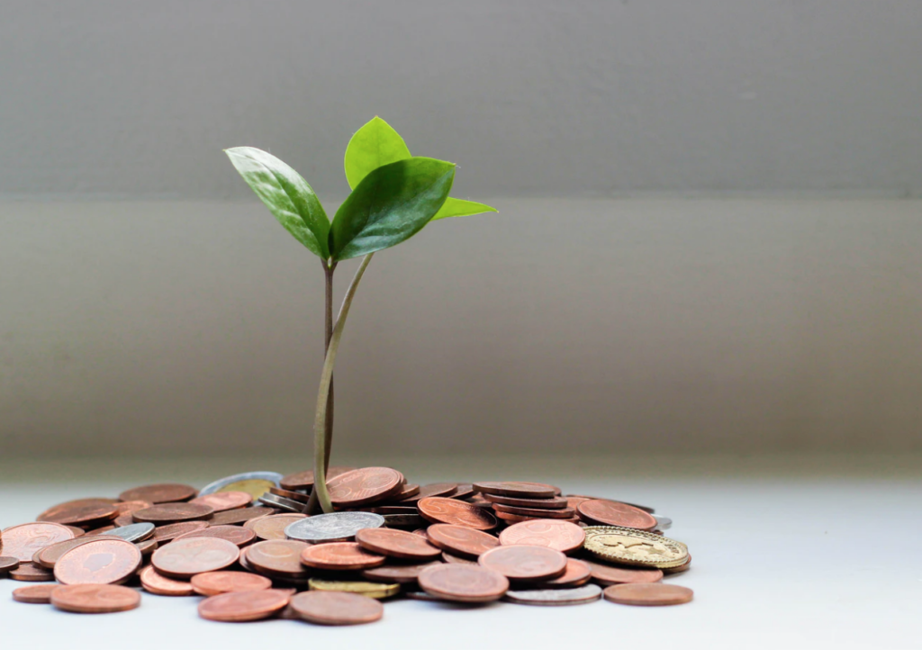 financial aid resources money tree with coins